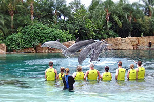Discovery Cove is a theme park owned and operated by SeaWorld Parks & Entertainment, and located in Orlando, Florida.