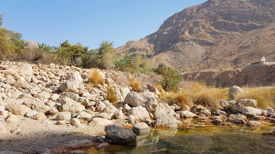 Go trekking to see wadis natural springs in Oman