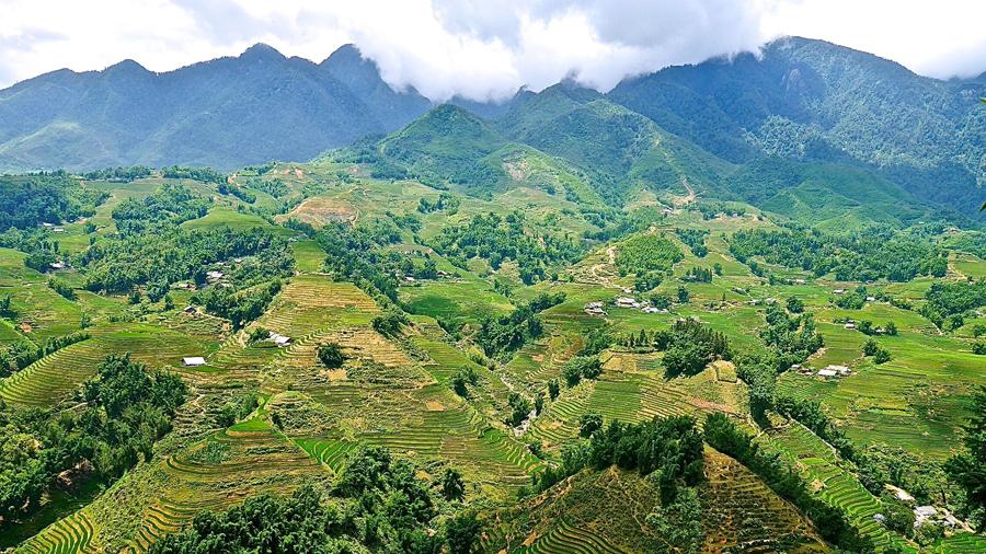 Sapa's lush mountainous terrain